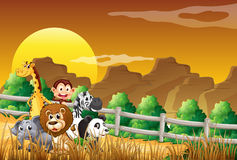 A group of animals at the woods royalty free illustration