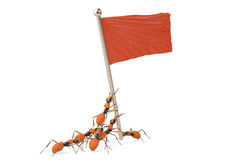 A group of ants with red flag.3D illustration. A group of ants with red flag 3D illustration Stock Images