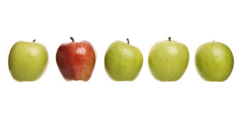 Group of apples Stock Image