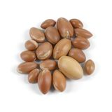 Group of argan nuts on a white background. Royalty Free Stock Photography
