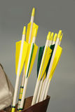 Group of arrows of a medieval bow in the quiver Stock Images