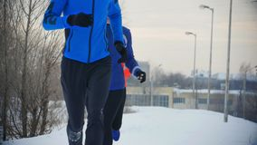 Group of athletes jogging in winter forest. Sport and leisure concept stock footage