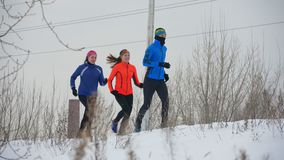 Group of athletes jogging in winter forest. Sport and leisure concept stock video