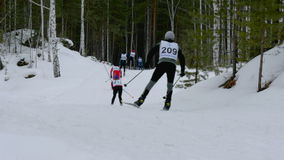 Group of athletes skiers down mountain in forest stock video footage