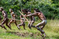 Group  Attacking Warriors of Papuan Headhunters of Dani tribe Royalty Free Stock Image