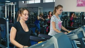 A group of attractive women training on a treadmill.  stock video