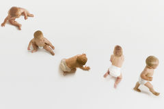 Group Of Babies. Row of babies sitting; crawling and walking on white background Stock Photos