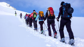 Group of backcountry skiers climbing a mountain in the Swiss Alps. Group of backcountry skiers and mountain guide climbing the Oberalpstock in the Swiss Alps and Royalty Free Stock Image
