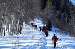 Group of backpackers in winter mountain Royalty Free Stock Photography