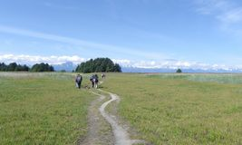 Group backpacking hike meadows mountains. Group of backpackers hiking across open meadow towards mountain range in Juneau Alaska royalty free stock photo