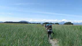 Group backpacking hike meadows mountains 2. Group of backpackers hiking across open meadow towards mountain range in Juneau Alaska stock photo