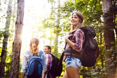 Group of backpacking hikers going for forest trekking. Group of backpacking hikers friends going for forest trekking royalty free stock photos