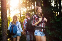 Group of backpacking hikers going for forest trekking. Group of backpacking hikers friends going for forest trekking stock photography