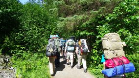 Group backpacking hikers headed into woods. Group of backpackers hiking into woods in Juneau Alaska royalty free stock images