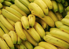 Group of bananas. Bananas in a stand supermarket Royalty Free Stock Photo
