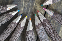 Group of bark covered branch multicolored pencils Stock Photo