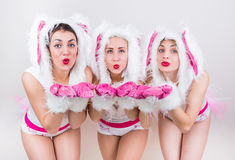 Group of beautiful girls in rabbit costume send kiss putting their hands forward Stock Photos