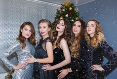 A group of beautiful glamorous women with bright make-up and dresses smiling at the camera on a Christmas tree background. A group of beautiful glamorous women royalty free stock photo
