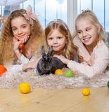 Group of beautiful little girls lying on carpet and playing with bunny. Stock Photography
