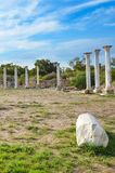 Group of beautiful marble columns belonging to Salamis ruins complex in Northern Cyprus. Salamis was ancient Greek city-state. Group of beautiful marble columns royalty free stock images