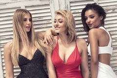 Group of beautiful ladies in elegant dresses at sunny summe. Group of beautiful ladies wearing elegant dresses. Girls having fun together, smiling. Two blonde stock image