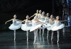 A group of beautiful white swan-ballet Swan Lake Stock Photo