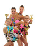 Group of beautiful young gymnast Royalty Free Stock Images