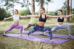 Group of beautiful young women doing yoga together.  royalty free stock photo