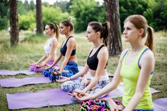 A group of beautiful young women doing yoga together. A group of beautiful young women doing yoga together stock photos