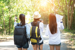 Group of beautiful young women walking in the forest,. Enjoying vacation, travel concept royalty free stock photos