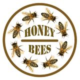 Group of bee or honeybee in the circle with text Royalty Free Stock Image
