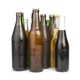 Group of Beer bottles isolated studio shot Royalty Free Stock Photography