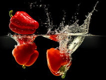 Group of bell pepper falling in water with splash on black background Stock Image