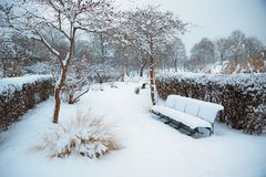 Group of benches at the wintry park. Group of snow covered benches at the wintry city park in munich Stock Image
