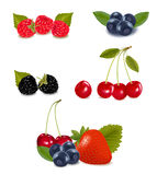 Group of berries and cherries. Royalty Free Stock Photography