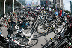 Group of bicycles in Car Free Day,Bangkok,Thailand. Royalty Free Stock Image