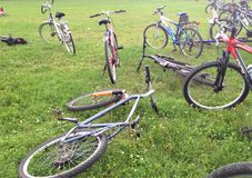 Bicycles on the grass, some of them standing up and some laid down. royalty free stock images