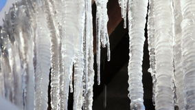 Group Of Big Melting Icicles At Spring Time stock footage