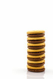 Group of Biscuit Cookie. Royalty Free Stock Images