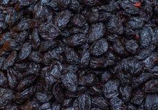 Group of black prunes. pattern. Tubishvat holiday stock images