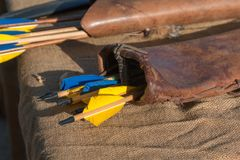 Group of Blue and Yellow Arrows inside Leather Case.  Royalty Free Stock Photo