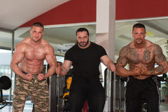 Group Of Bodybuilders Posing in Gym Stock Images