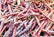 Group of borlotti beans ready to be cooked Stock Photography