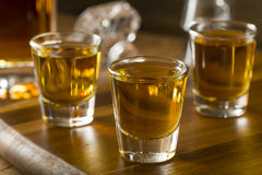 Group of Bourbon Whiskey Shots. Ready to Drink stock photo