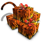 Group of box gift tiger tape red and tail Royalty Free Stock Photo