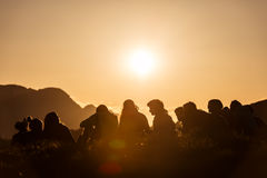 Group of Boy Scouts Royalty Free Stock Image