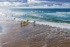 Group of boys goes surfing Stock Photo