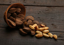 Group of brazil nuts in a bowl Stock Images