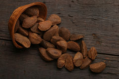 Group of brazil nuts in a bowl Stock Photography