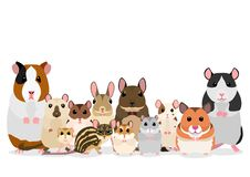 Group of cute pet rodents. Group of breeds of mice and rats for pets on white background vector illustration